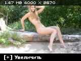 http://i1.imageban.ru/thumbs/2013.11.04/27cccc3b539b916bf30c52c62448fe42.jpg