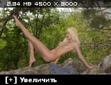 http://i1.imageban.ru/thumbs/2013.11.04/953db24f0f08ef20b3aa42f7d03b210d.jpg