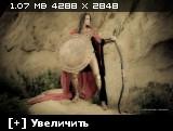 http://i1.imageban.ru/thumbs/2013.11.29/ab90aef7bcc021749a5b9005ef406587.jpg