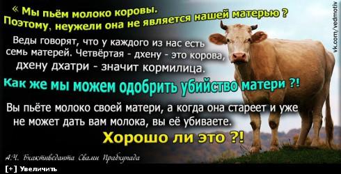 http://i1.imageban.ru/thumbs/2013.12.13/0c634cc737429ab064dd0e42f6d2d525.jpg