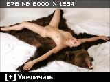 http://i1.imageban.ru/thumbs/2014.01.26/b094cf6349aad0cc2b4f2e21c9f7f878.jpg