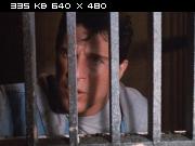 ������������ ������ 5 / American Ninja V (1993) DVDRip | VO