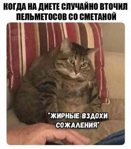 e8cba3b9f761d0c02380c71ce9011c4d.jpg