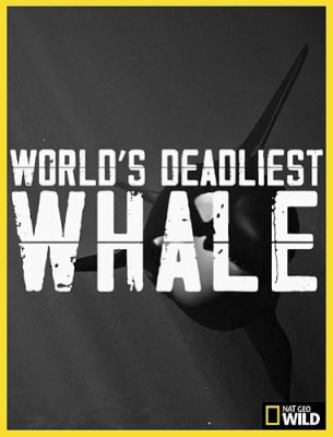 Nat Geo Wild: Самый смертоносный кит / World's Deadliest Whale (2020) HDTV 1080i