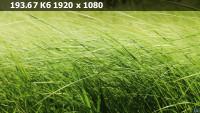 16fc563368527cc70ea816030320f698.webp