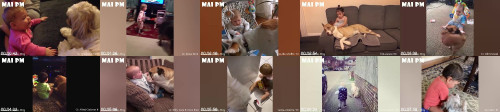 77c1ccedd8ce715a9472ceac26c1cfe2 - What Happens When Babies Playing With Dogs ! Those Are The Cutest Moments In The World