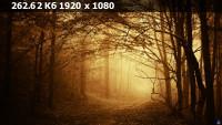 fbe7fbd53b72651d0c2152f458abe80e.webp