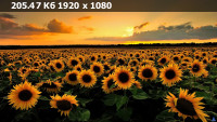 26b46a68ed4d6fac848bf6184b97cca8.webp