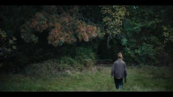 Каштановый человечек / The Chestnut Man [Сезон: 1] (2021) WEB-DL 1080p | SDI Media